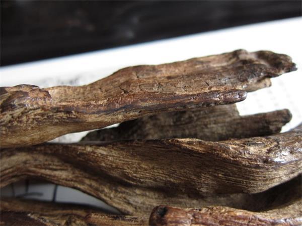 什么是红土沉香?红土沉香有什么特点?