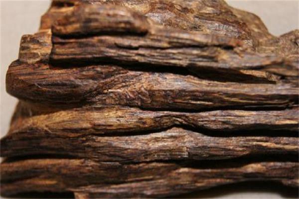 沉香怎么鉴定?沉香和沉香木的区别鉴别大全